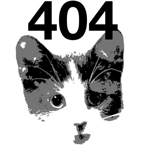 404kitty
